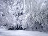 11 души в три коли закъсаха в снега на пътя Шипка-Бузлуджа