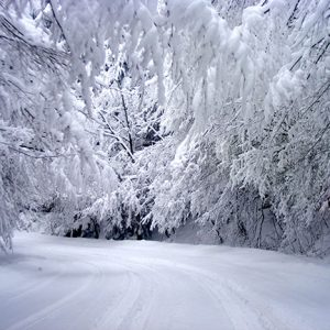 Жълт код за снеговалежи днес в област Габрово
